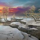 Sunset In February by Igor Zenin