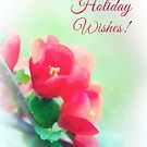 Quince Holiday Card by Anita Pollak