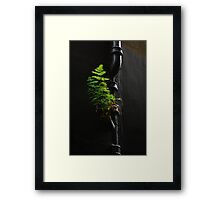 Urban Foliage Framed Print