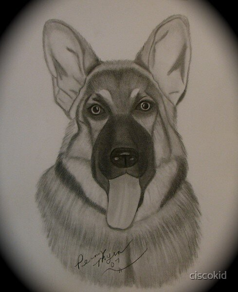 """The king in my house """"Duke"""" by ciscokid"""