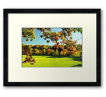 Autumn in Connecticut Meadow Framed Print