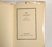 Cover Page of The Colossus by Publication In The Moment