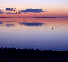 Great Salt Lake  by cshphotos