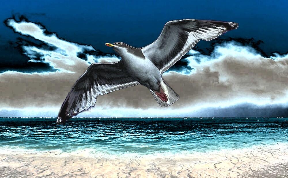 seagull night by CheyenneLeslie Hurst