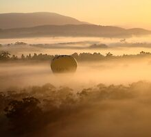 Hot Air Balloon by MichaelA