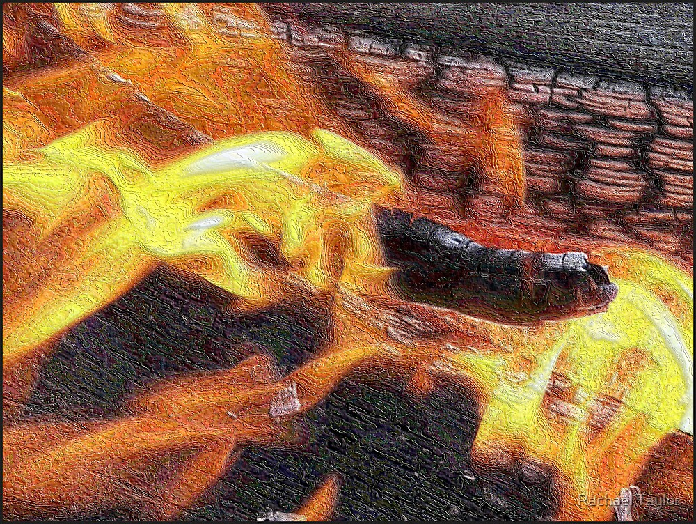 Fire Mosaic by Rachael Taylor
