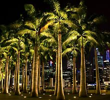 Singapore: Palms Up  by Kasia-D