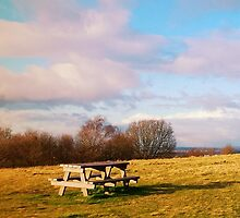 Autumn Morning at Barr Beacon in Birmingham by Claire Prothero