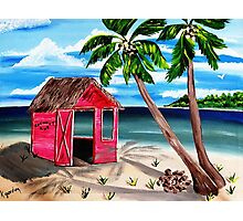 Pink CoCoNut Hut Photographic Print