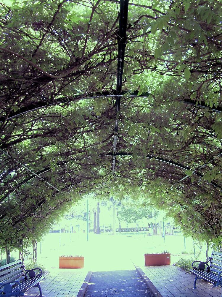 nature shade by Louise Richardson