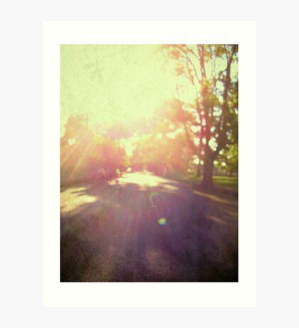 toward spring sun Art Print