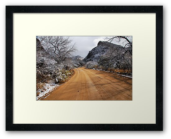 Road to Mt. Hopkins by Barbara Manis