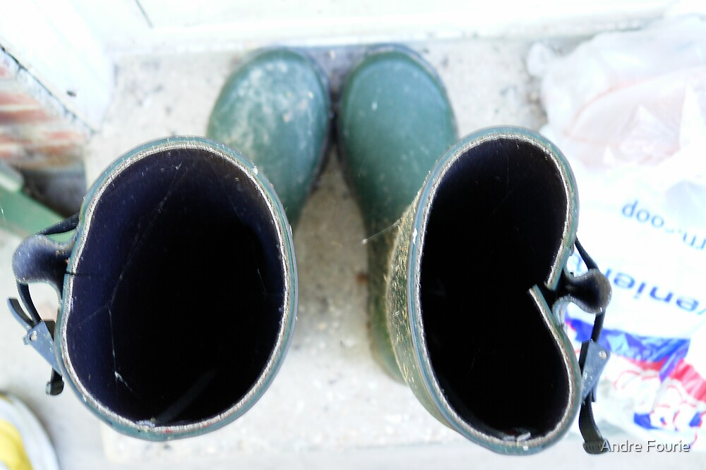 wellies by Andre Fourie