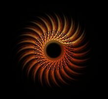 sun by Diana Calvario