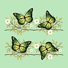 Four green butterflies by Gaspar Avila