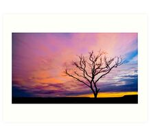 Spindly Dusk Art Print