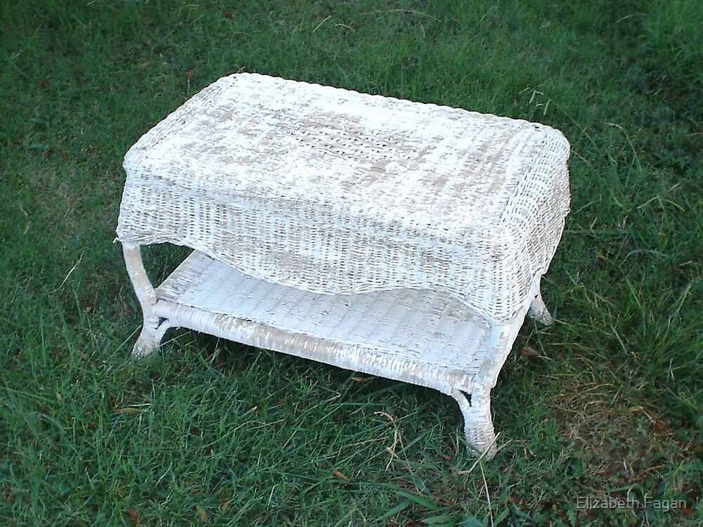 Wicker in the Grass by Elizabeth Fagan