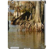 A Brown World iPad Case/Skin
