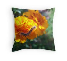 critter on marigold Throw Pillow
