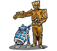 R2-Dalek2 & Cyber3PO Photographic Print