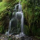 Lathkill Falls 2 by Dave Warren