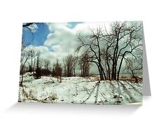 Snowy Upstate NY Beaches Greeting Card