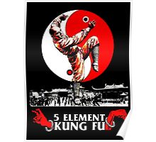 5 Element Kung Fu. Poster