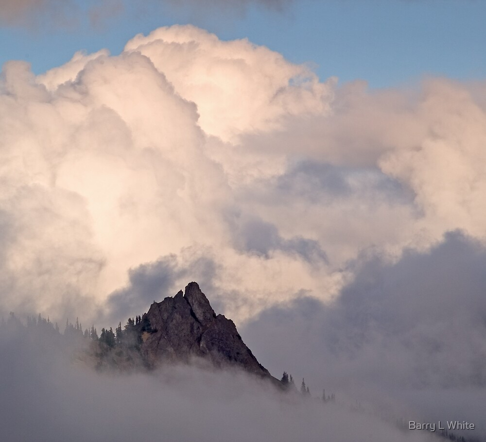 Hurricane Ridge (3665) by Barry L White