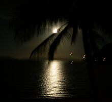 One Night by nvs7