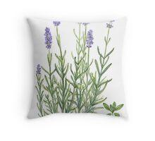 Narrow-leaved Lavender - Lavandula angustifolia Throw Pillow