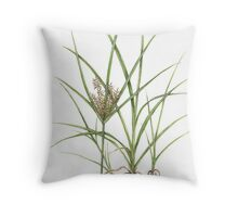 Tigernut Sedge - Cyperus esculentus Throw Pillow