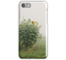 Sunflower Patch iPhone Case/Skin