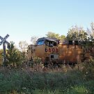Train Crossing by AbigailJoy