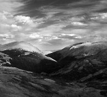 Alpine Tundra, Rocky Mountain National Park, Colorado by Daniel Owens