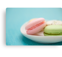 French Macaron Cookies Canvas Print