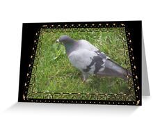 Pigeon on the Green Greeting Card