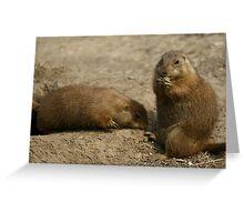 Cute Playful Groundhog Greeting Card