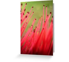 nature brush Greeting Card