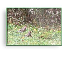 My Friend Flickers Metal Print
