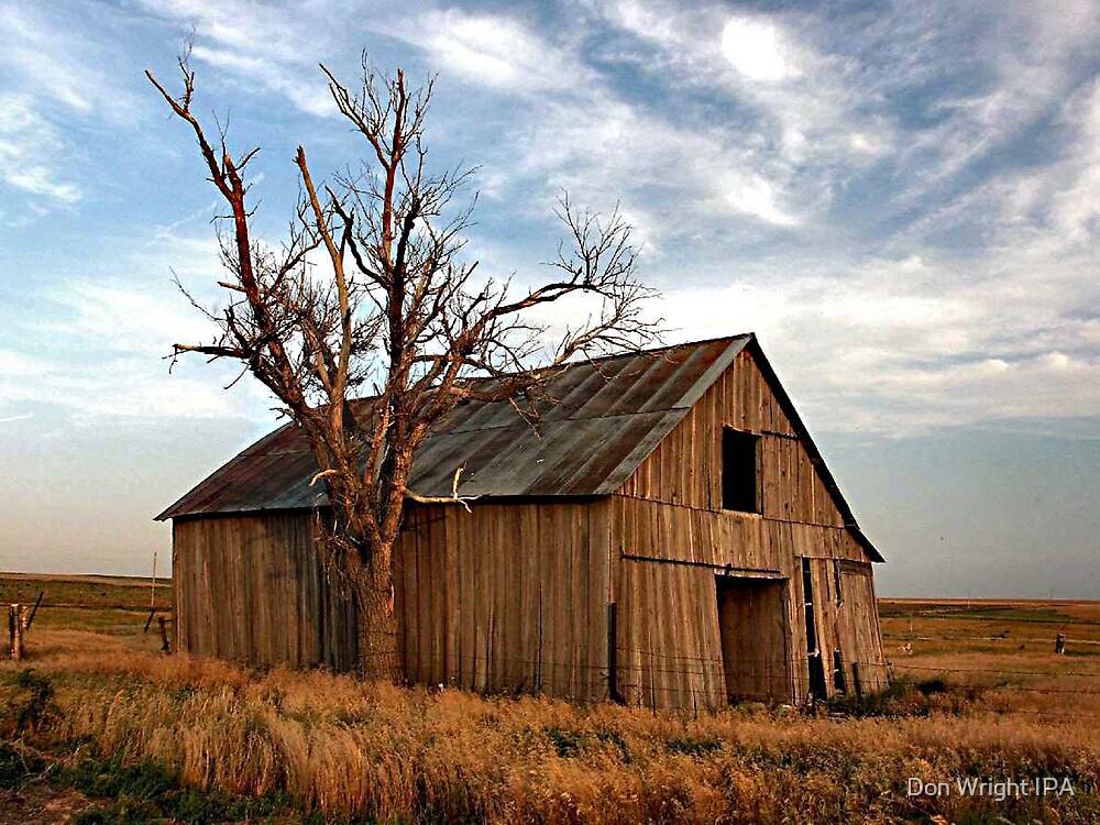 Cinda's Barn by Don Wright IPA
