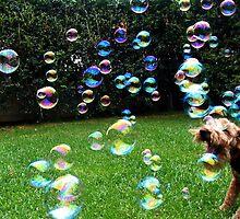 Bubble Hunter by agypsyk