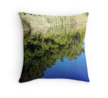 Mountain Pond Throw Pillow