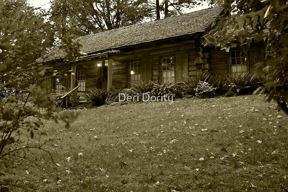 The Log Cabin by Deri Dority
