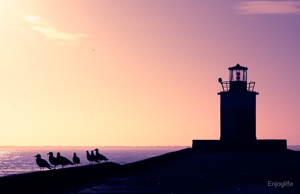 lighthouse and seagulls in the harbor by Enjoylife