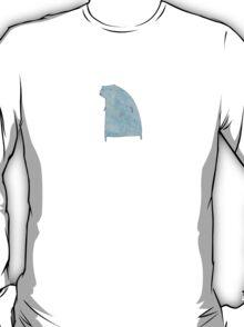 a bear T-Shirt