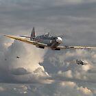Spitfire - Strike Force by warbirds