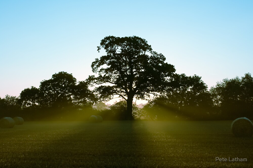 Early Sun by Pete Latham