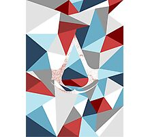Assassin's creed polygon Photographic Print