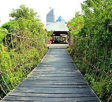 The jungle's Bridge - Kuala Lumpur, Malaysia. by Tiffany Lenoir