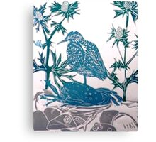 Sand Piper in Sea Holly Canvas Print